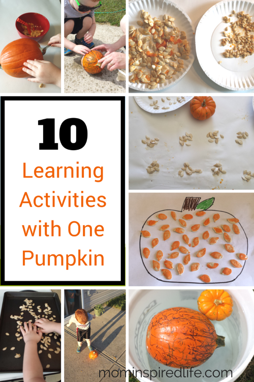 10 Learning Activities with One Pumpkin