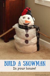 Build a Snowman in your House