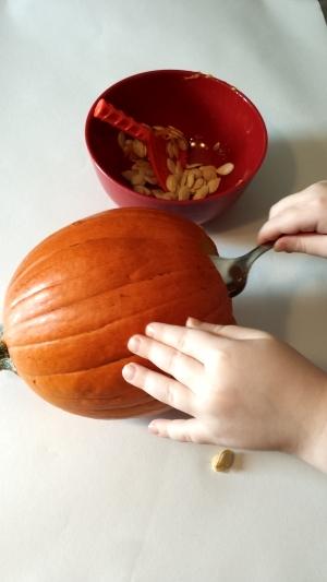Pumpkin Scooping