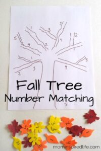 Number Recognition: Fall Tree Number Matching