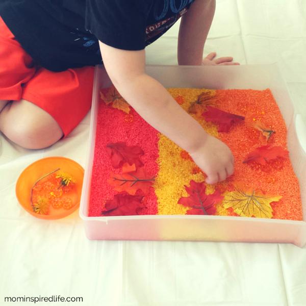 preschooler playing with pumpkin sensory bin