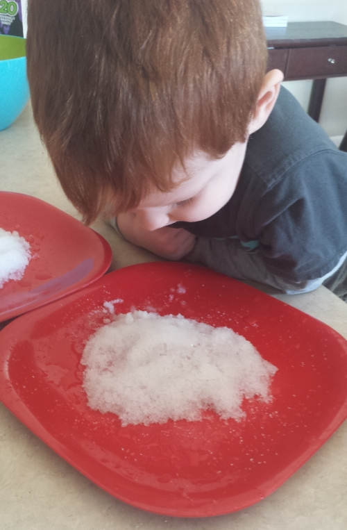 Winter Science Snow Melting Experiment