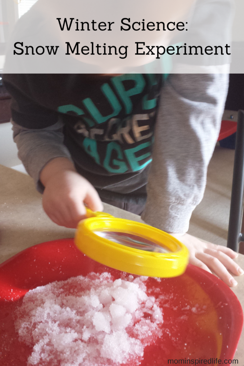 Winter Science: Melting Snow Experiment. Great science activity for young children that builds critical thinking skills.