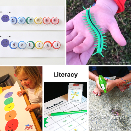 Bug and Butterflies literacy learning activities