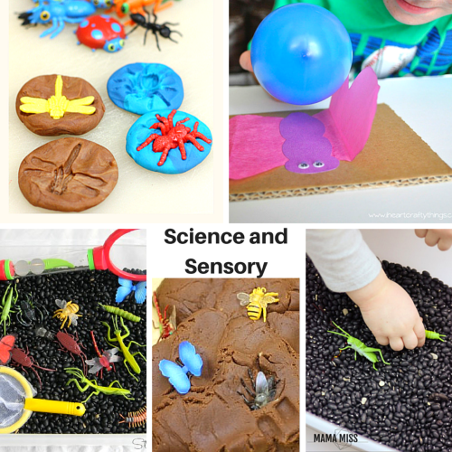 Science and Sensory learning activities with bugs theme and butterflies theme