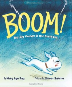 BOOM! book about thunderstorms