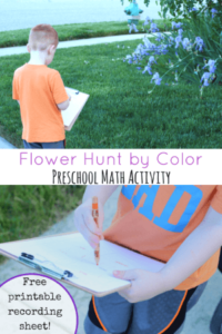 Flower Hunt by Color Math Activity