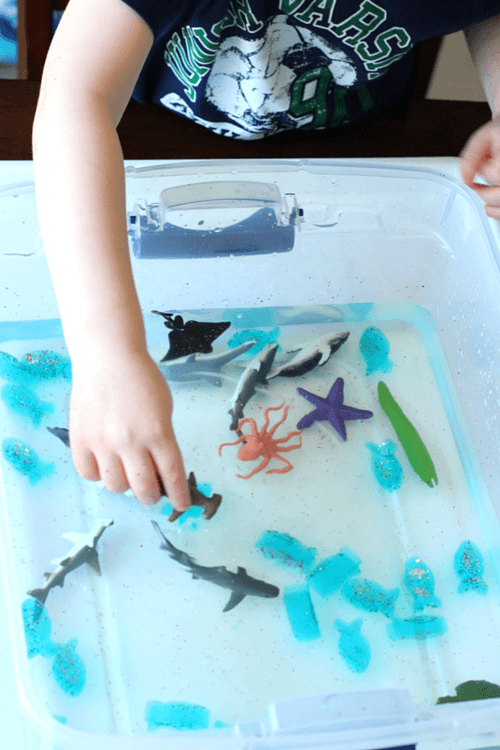 Children can play with the slippery rainbow fish and ocean animals.