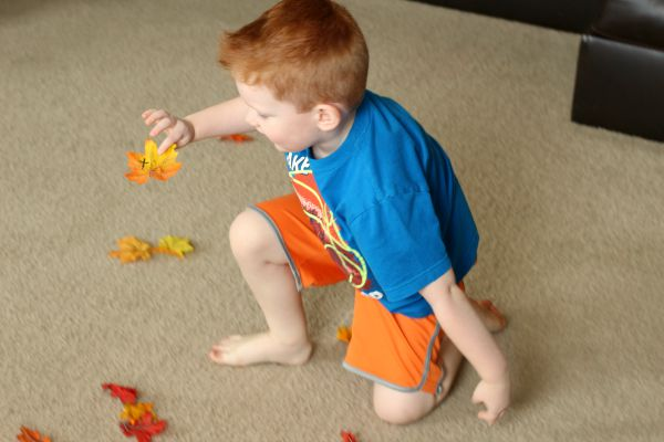 Alphabet activity in a pile of fall leaves!