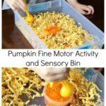 Pumpkin Fine Motor Activity and Sensory Bin