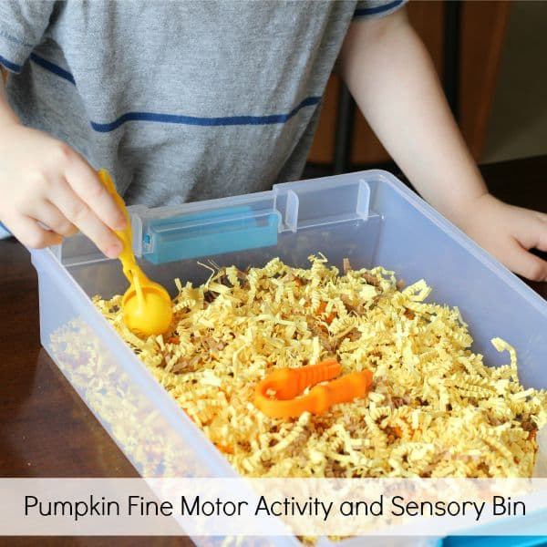 Pumpkin fine motor activity and sensory bin that teaches counting and one to one correspondence.