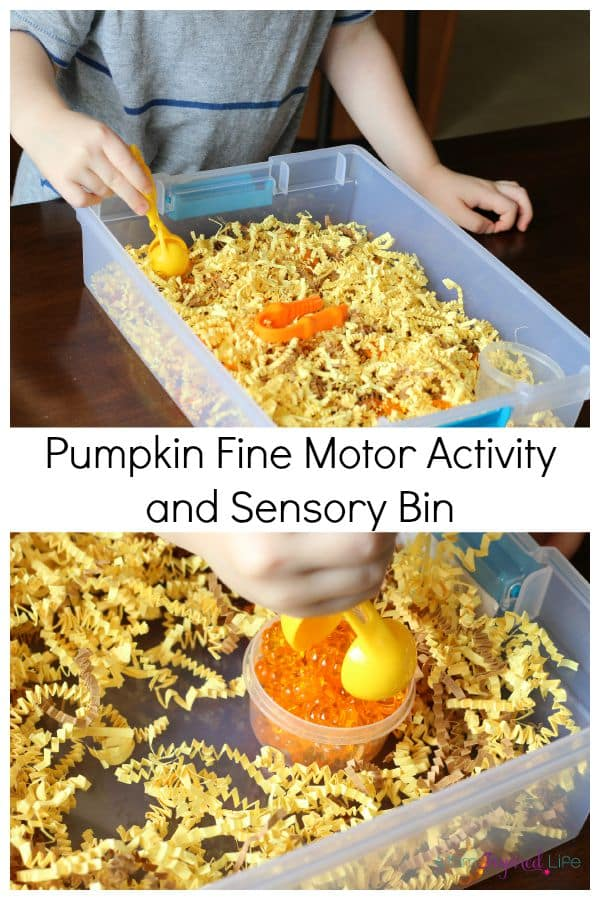 Pumpkin fine motor activity for toddlers and preschoolers. A fun fall sensory bin!