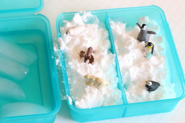 Polar animals sensory bin activity.