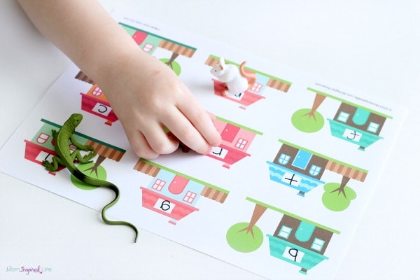 Pet activity for preschool that works on beginning sounds and letter identification.