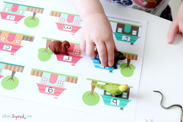 Pets activity for toddlers. Teach letter identification with this fun, hands-on alphabet activity!