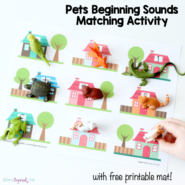 Pets beginning sounds matching activity for preschool and kindergarten. A fun, hands-on alphabet activity!