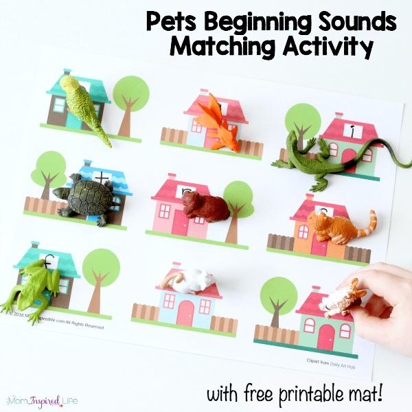 Pets beginning sounds matching activity for preschool and kindergarten. A fun, hands-on alphabet activity!