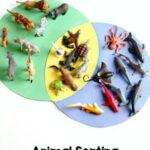 Sorting Animals Venn Diagram Activity