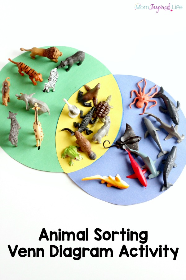 Sorting animals venn diagram activity ccuart Images