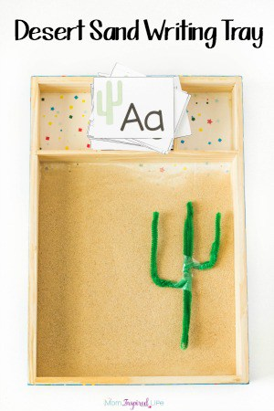 This desert sand writing tray is a fun way to practice writing letters, shapes, lines and more. A desert themed sensory alphabet activity!