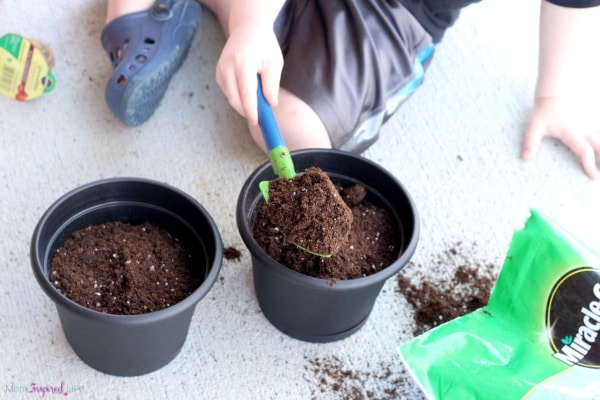 Gardening with kids and teaching them how to grow their own food.