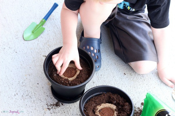 Preschool garden and science activity. Includes free printable to record observations.