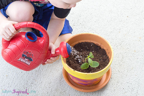 Planting a vegetable garden with children. A science exploration for spring.