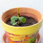 Kid-Made Painted Planter or Flower Pot