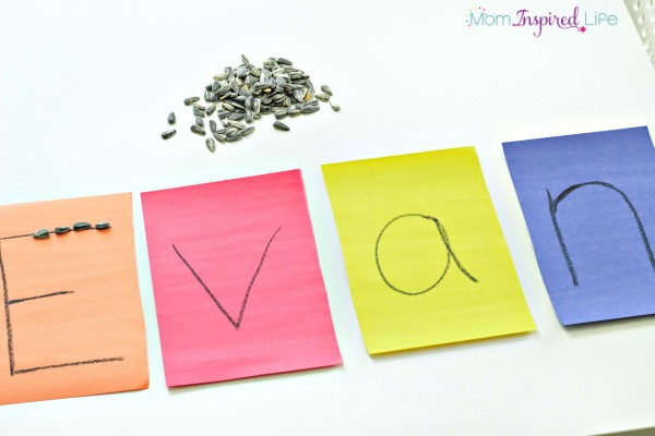 Tracing-Letters-with-Seeds-1