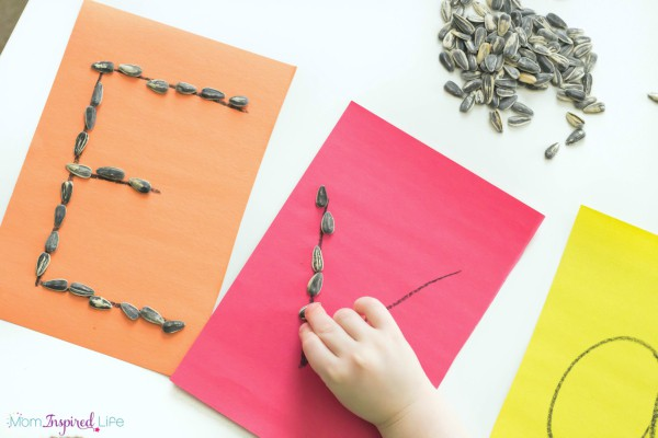 Tracing-Letters-with-Seeds-2