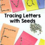 Tracing Letters with Seeds