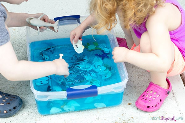 Kids will love learning about the ocean habitat and the animals that live in it when they play with this neat sensory bin.
