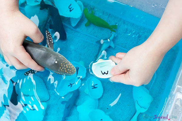Learn about letters and beginning letter sounds with this hands-on ocean alphabet activity.