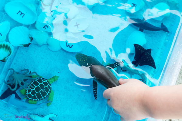 A preschool science and sensory play activity that teaches children about the ocean.