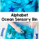 Alphabet Ocean Sensory Bin