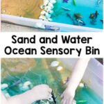 Sand and Water Ocean Sensory Bin