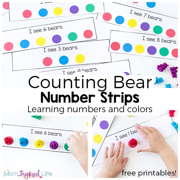 Learning to count and recognize colors with counting bears.