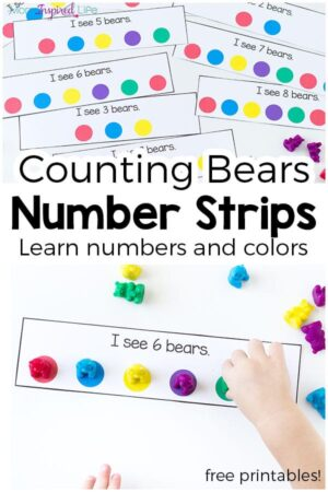 These counting bear number strips make learning numbers and colors hands-on and engaging! They are perfect for toddlers and preschoolers and would be a great addition to a math center!