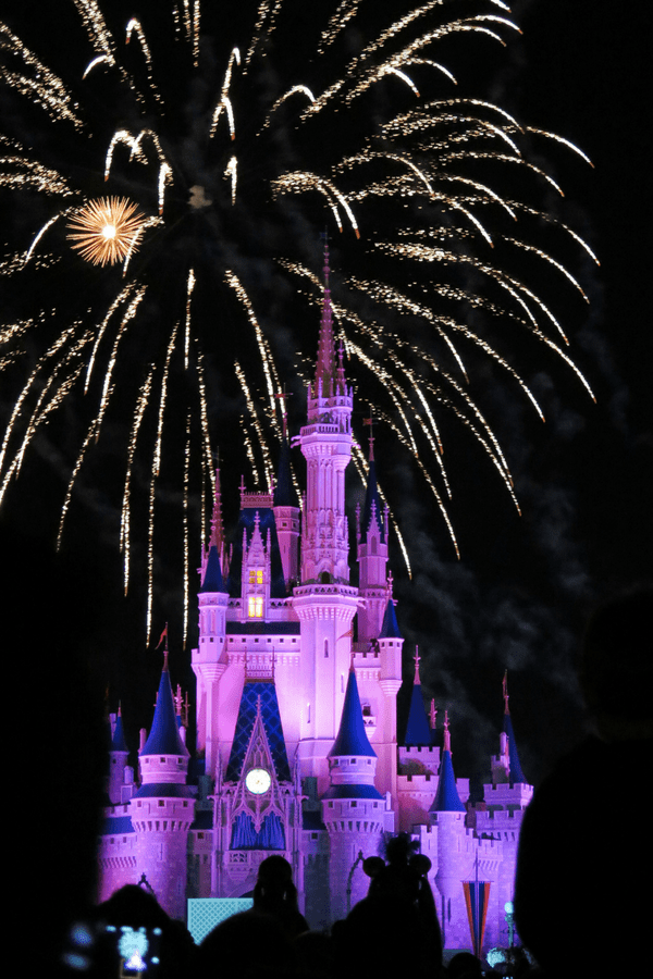 Disney in winter and other Orlando tourist attractions! Plus, a great way to save money while vacationing in Orlando!