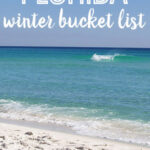 Things to Do in Florida During Winter: Florida Winter Bucket List