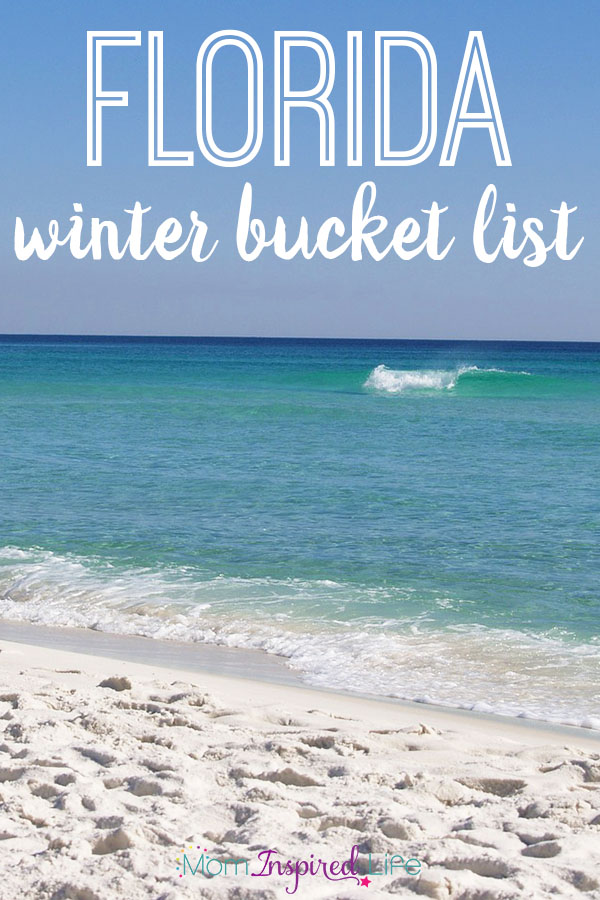 Things to do in Florida during winter. This is a great Florida winter bucket list!