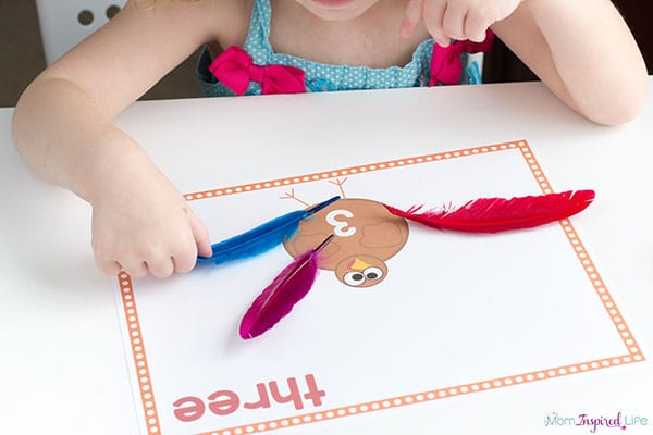 A hands-on turkey math activity for preschool.