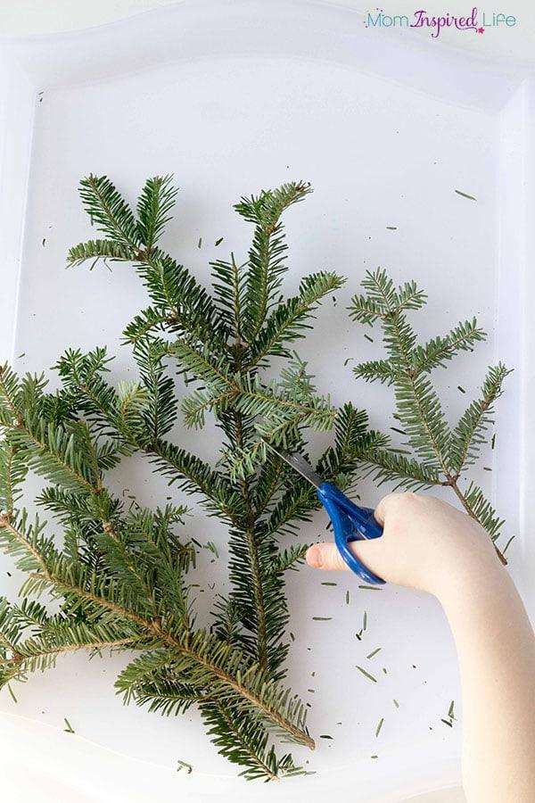 Pine Tree ornament for Christmas.