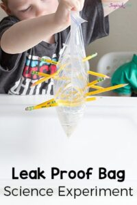 Leak Proof Bag Science Experiment for Kids