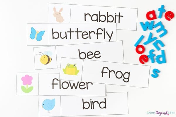 Build spring words literacy activity.