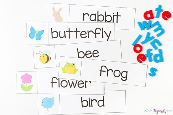graphic regarding Spring Printable Activities titled Spring Concept Printables and Functions for Preschool and