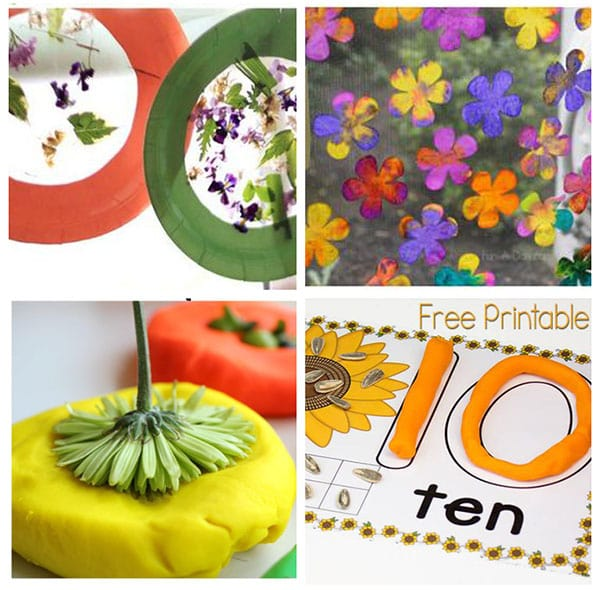 Flower activities for spring theme.