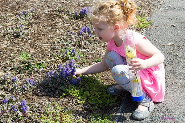 Nature walk for kids to explore and collect items from nature.