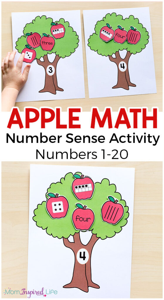 This apple tree number sense activity is a hands-on, apple themed activity that reinforces number sense. It would be perfect for your fall math lessons!