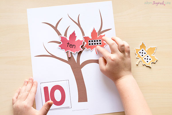 Fall numbers activity for kindergarten and preschool.